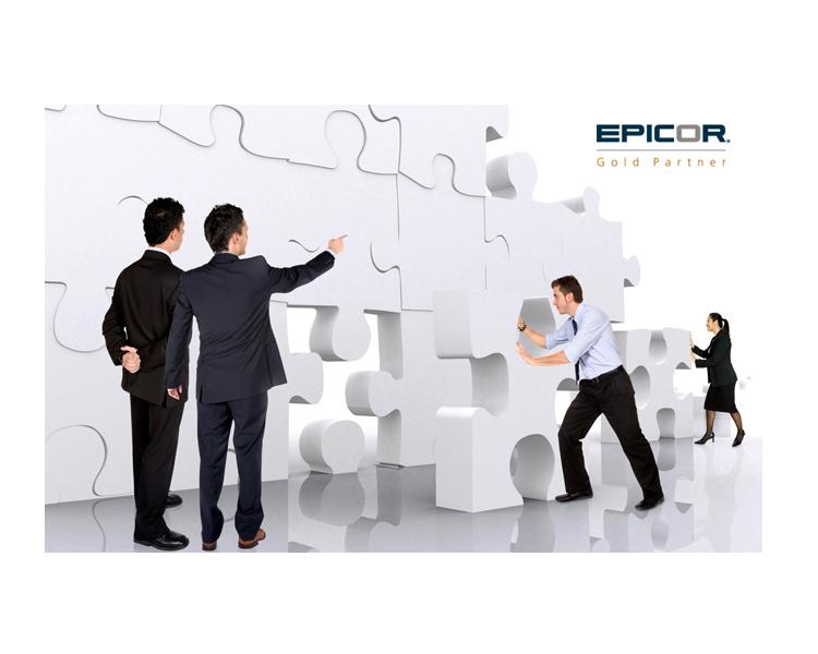 Epicor Consulting