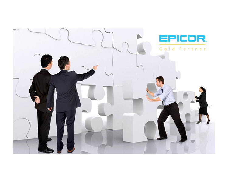 Epicor Consulting